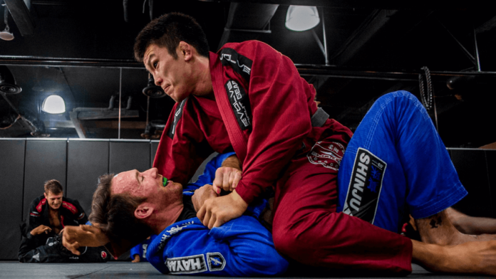 How To Survive the BJJ Mount Position for Beginners