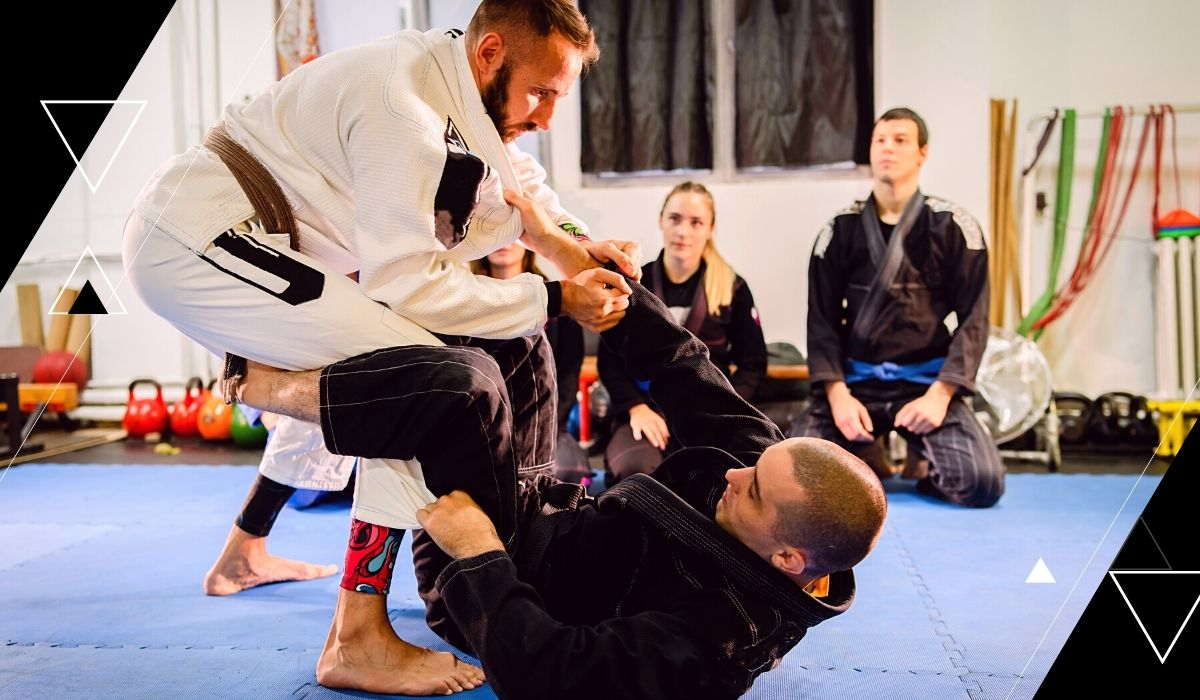 guards in bjj