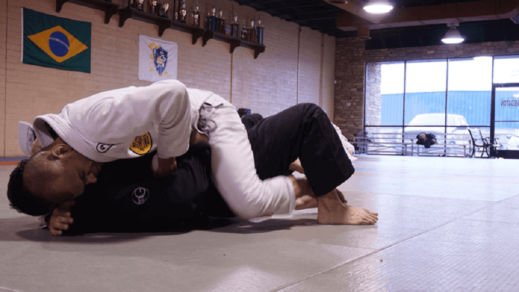 survive the bjj mount