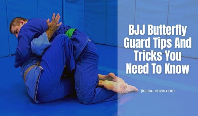 bjj butterfly guard tips and tricks you need to know