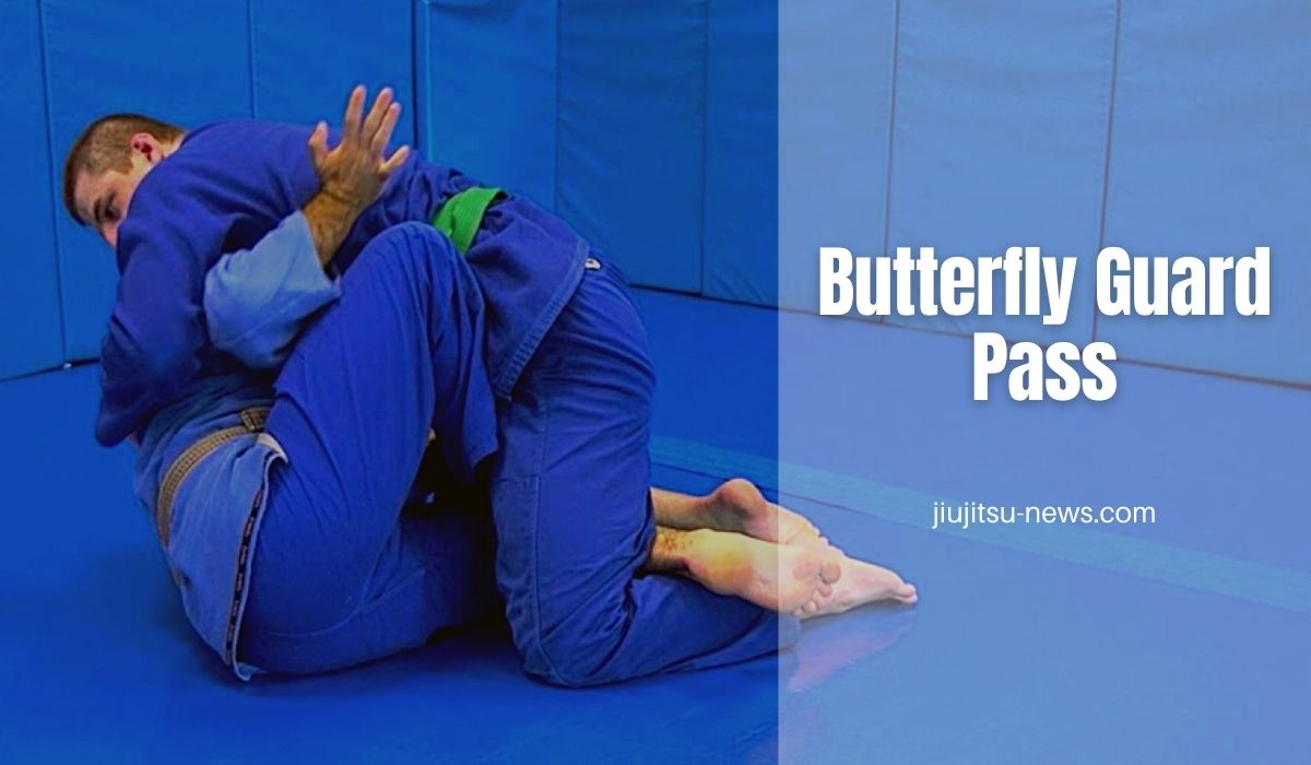butterfly guard submissions